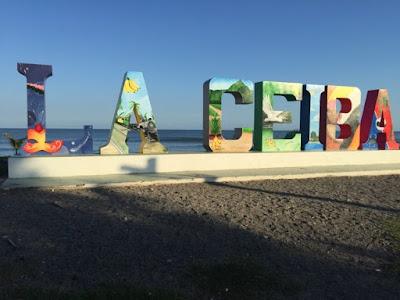 "Giant concrete ""La Ceiba"" by the oceanside"