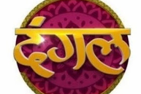 DANGAL tv channel number