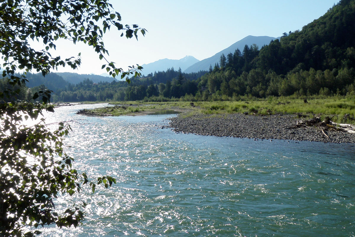 Chilliwack BC Real Estate: The Vedder River Rotary Trail, Chilliwack BC