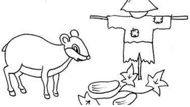 Sketsa Gambar Binatang