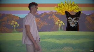 Galantis & JVKE - Dandelion [Official Lyric Video]