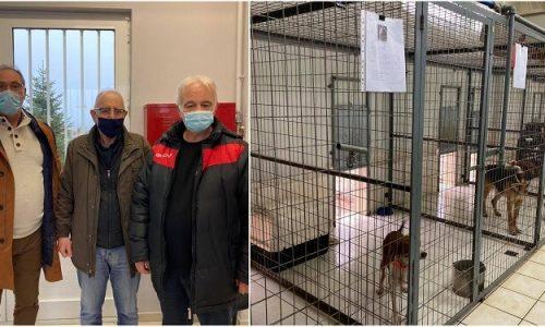 Σε ιδανικές συνθήκες φιλοξενούνται στο καταφύγιο του Δήμου Ιωαννιτών δεκάδες αδέσποτα ζώα, με την προσπάθεια αναβάθμισης να συνεχίζεται με εντατικούς ρυθμούς.