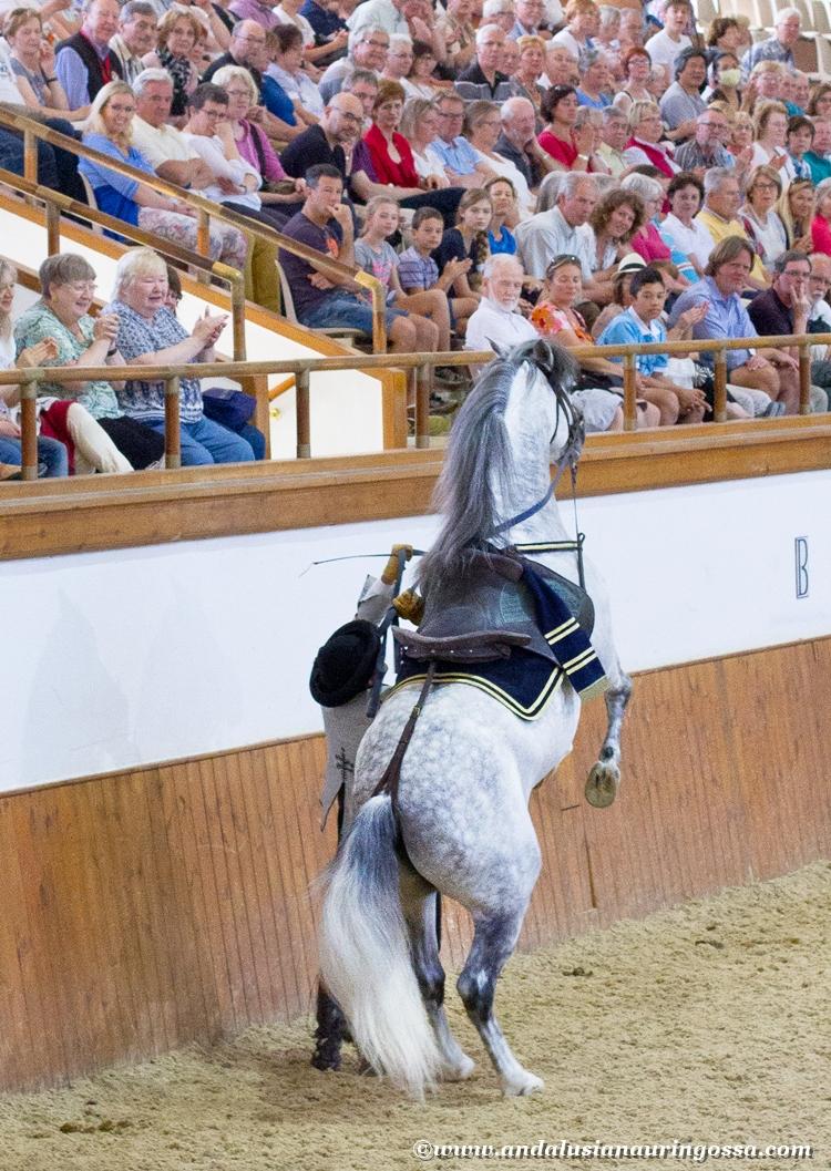 Andalusian kuninkaallinen hevoskoulu Jerez_Andalusian Royal Equestrian School Jerez_9