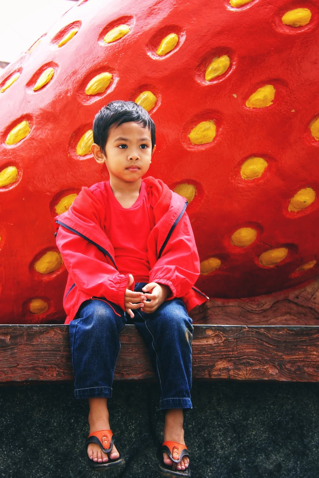 Hafiz di Big Red Strawberry Farm, Cameron Highlands 2018