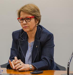 Resultado de imagem para deputada Tereza Cristina (DEM-MS)