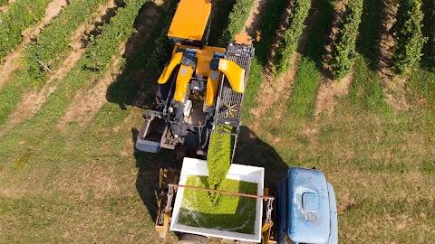 Innovatív vállalkozásokat segít az agrárkamara és a Design Terminal