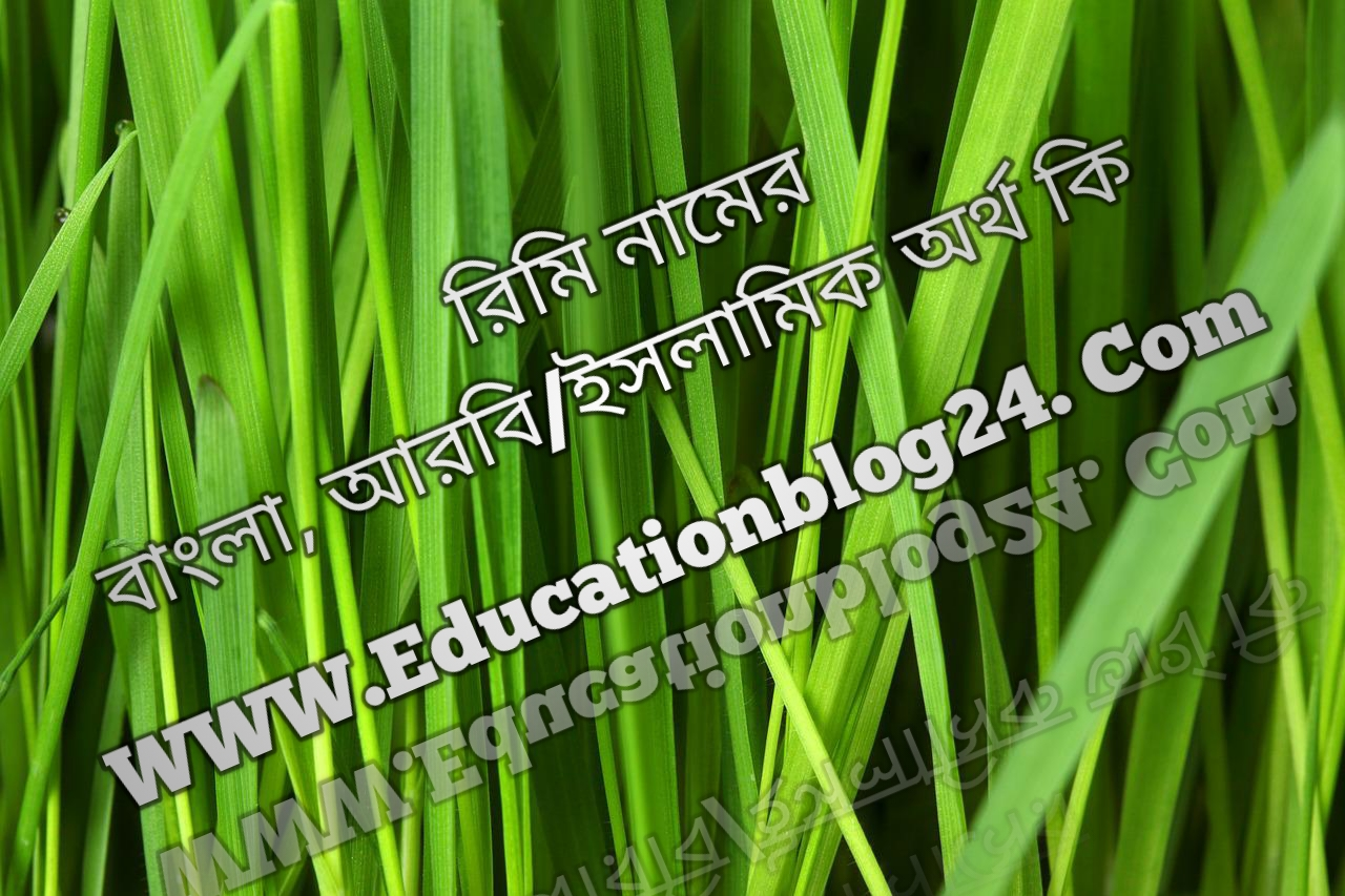 Rimi name meaning in Bengali, রিমি নামের অর্থ কি, রিমি নামের বাংলা অর্থ কি, রিমি নামের ইসলামিক অর্থ কি, রিমি কি ইসলামিক /আরবি নাম