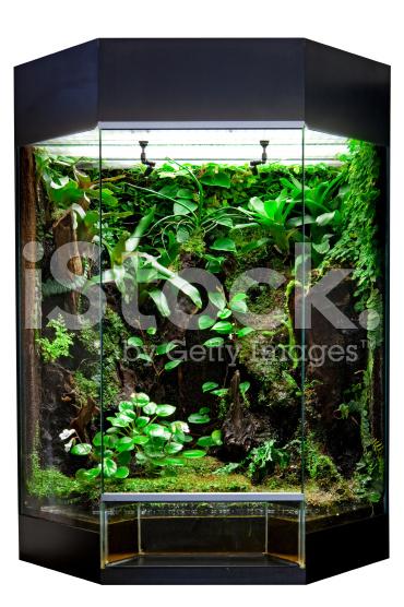 foto-macam-macam- model-terrarium-jakarta-indonesia-blogspot-com1