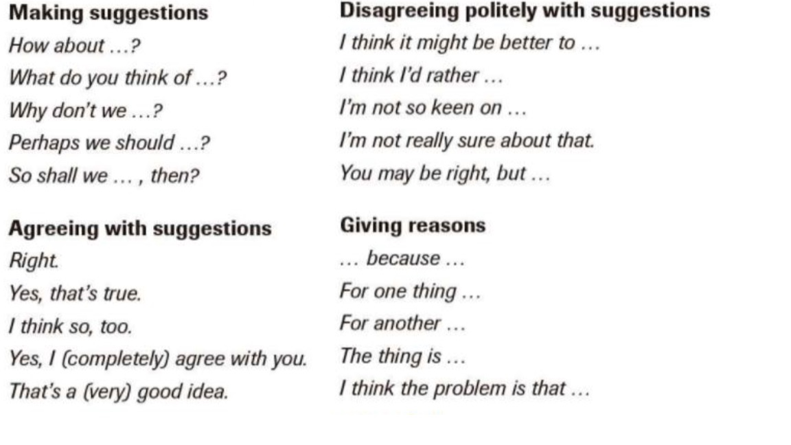 useful expressions in english essay