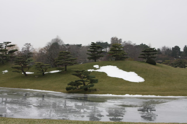 Icy river and snow at the Chicago Botanic Garden in January
