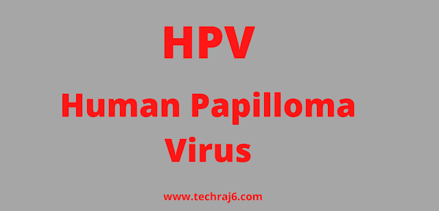 HPV full form, What is the full form of HPV