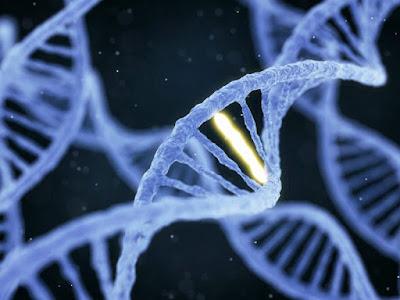 2 DNA HACKS TO IMPROVE BAD GENES