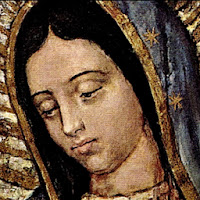 Mary Apk Download for Android