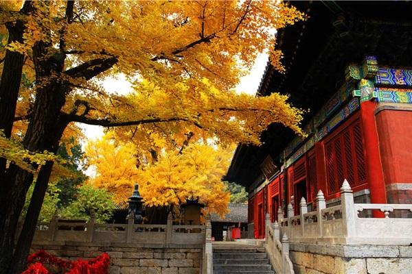 วัดหงหลัว (Hongluo Temple: 红螺寺) @ www.chinabeijingprivatetour.com