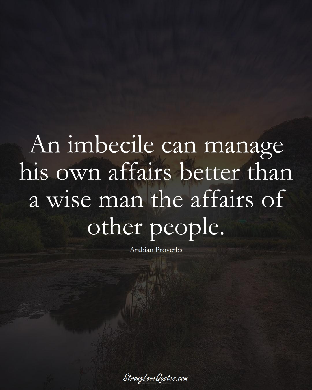 An imbecile can manage his own affairs better than a wise man the affairs of other people. (Arabian Sayings);  #aVarietyofCulturesSayings