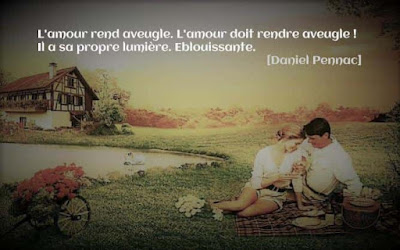 Belle citation amoureuse de Daniel Pennac