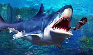 Shark-io