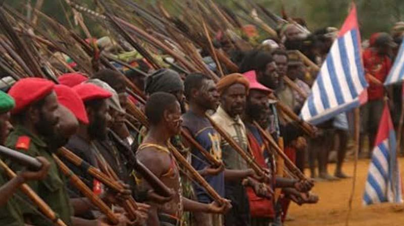 Pemerintah Diminta Tetapkan Organisasi Papua Merdeka Sebagai Terori