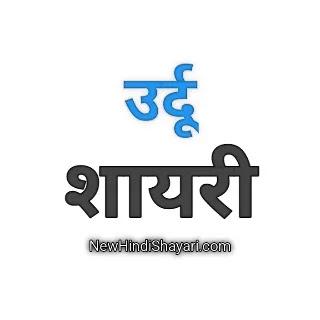 Best Love Urdu Shayari With