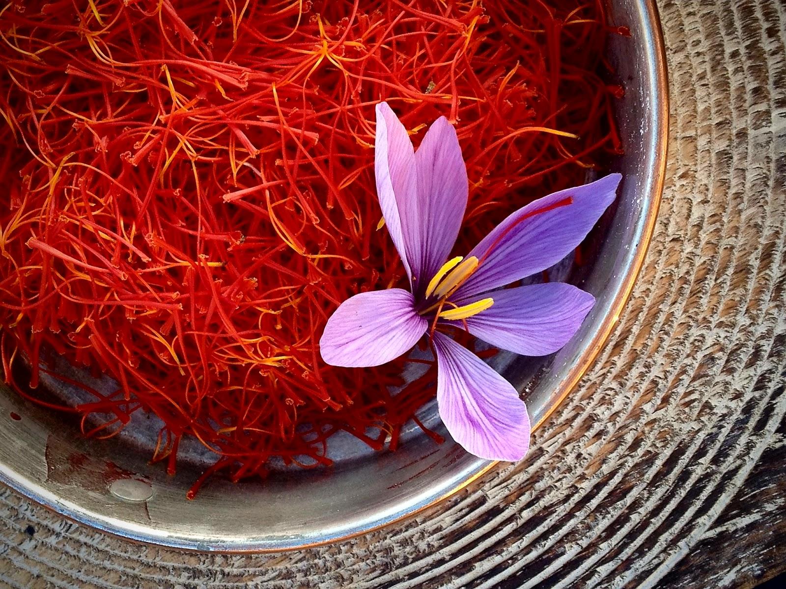 wellness ayurveda: interesting benefits of golden spice