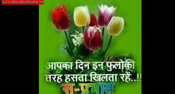 Good Morning Video Status For Whatsapp