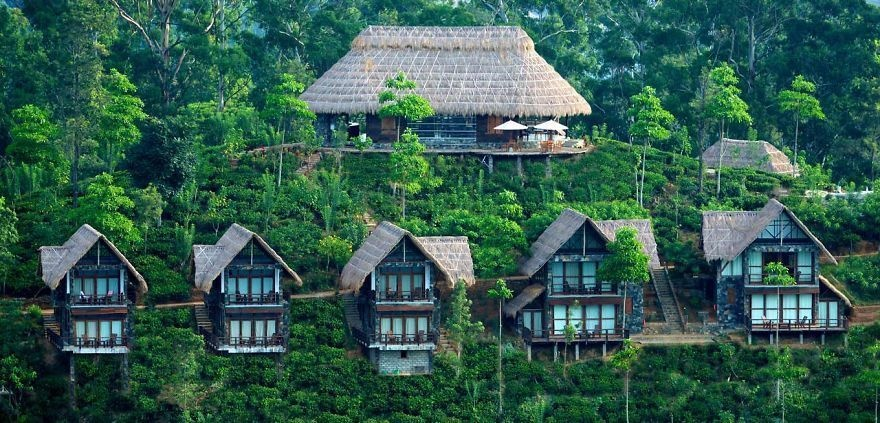 14 Crazy Hotels That Will Give You Serious Travel Goals - 98Acre Teafield Hotel in Sri Lanka is high up in the mountains, right in the middle of Sri Lanka's vast valleys of tea fields.