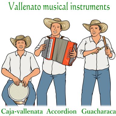 ハカ バジェナータ Caja vallenata アコーディオン Accordion