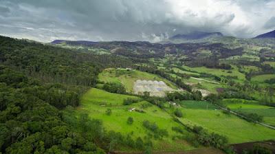 https://www.notasrosas.com/Corona celebra Día de los Parques Nacionales Naturales de Colombia
