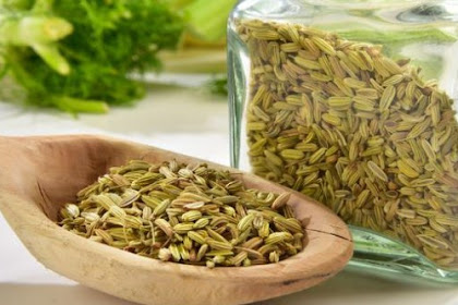 Benefits and Side Effects of Fennel for Breastfeeding Mothers