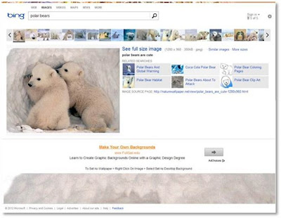 Bing Old Image Search Polar
