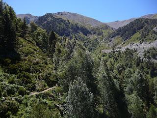 Valle del río Cadí