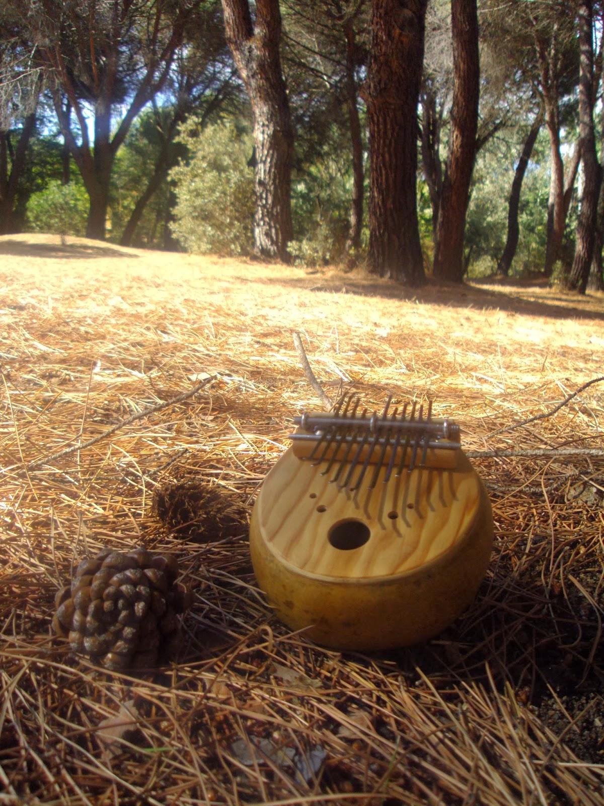 Le Kalimba, un instrument de musique simple et magique.