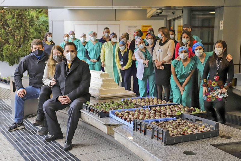 Sobreviviente de Covid regaló 700 cactus al personal médico que lo atendió
