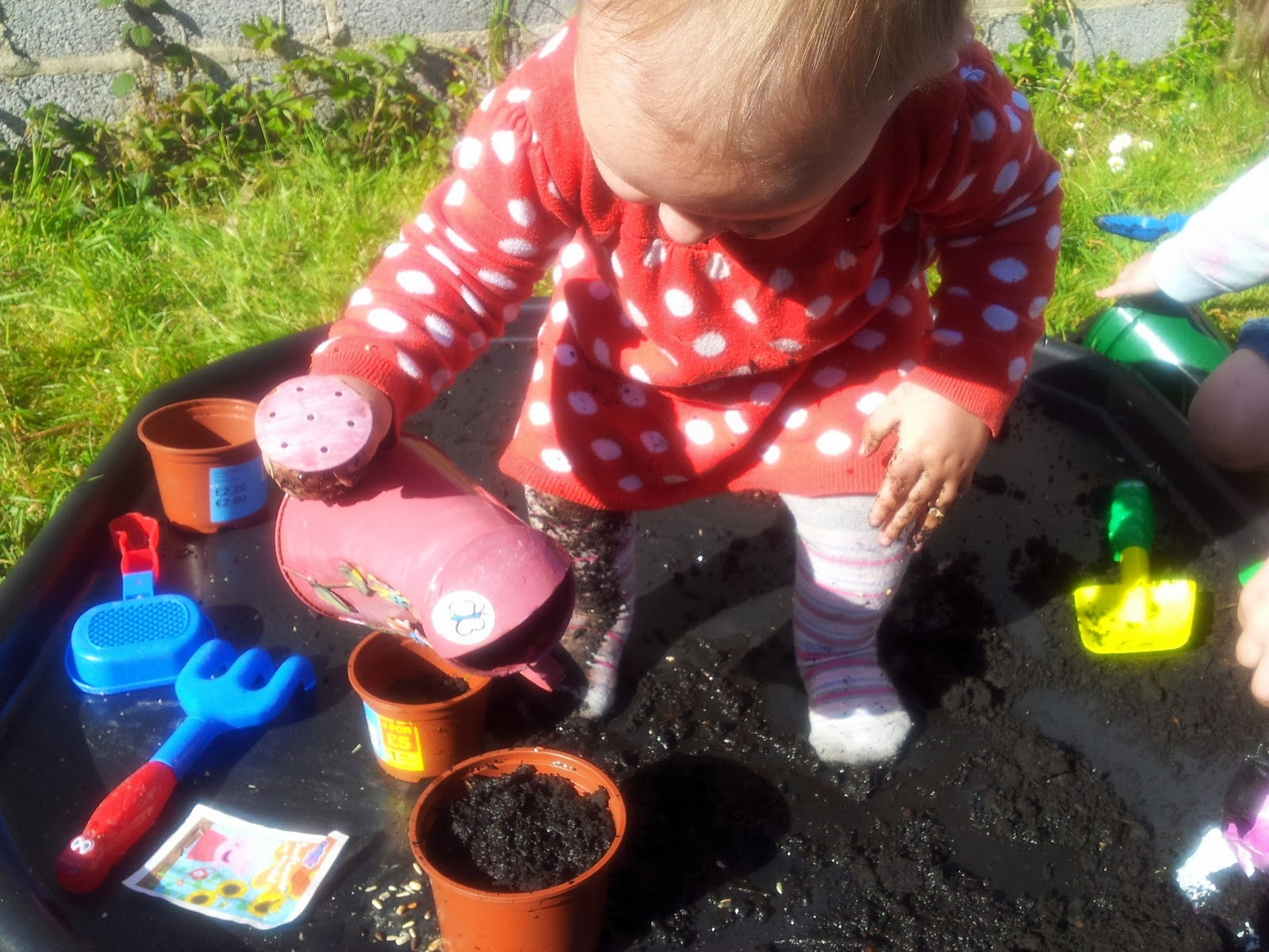 Growing tomato sunflower seeds messy play matilda mae sensory outdoor learning