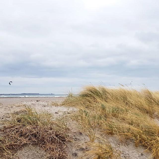 Vom Glück dieser Erde: Urlaub auf dem Küselhof und Reiterhof Witt auf Fehmarn. Die Strände der Insel sind wunderschön und vielfältig.