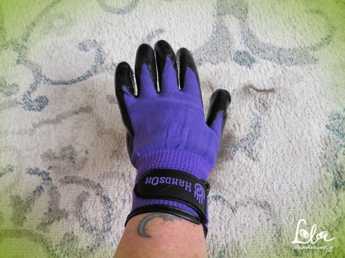 HandsOn Grooming Gloves