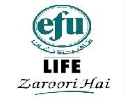 EFU Life Assurance Limited Latest Jobs Executive Officer 2021