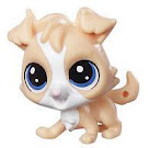 Littlest Pet Shop Tubes Tanner Muttley (#89) Pet