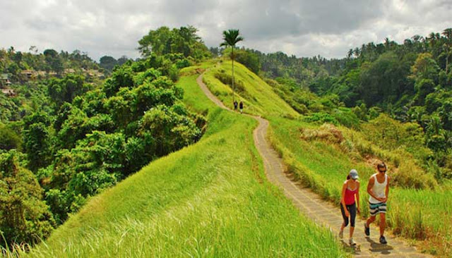 Campuhan Hill Ubud - The Beauty of Love Hill