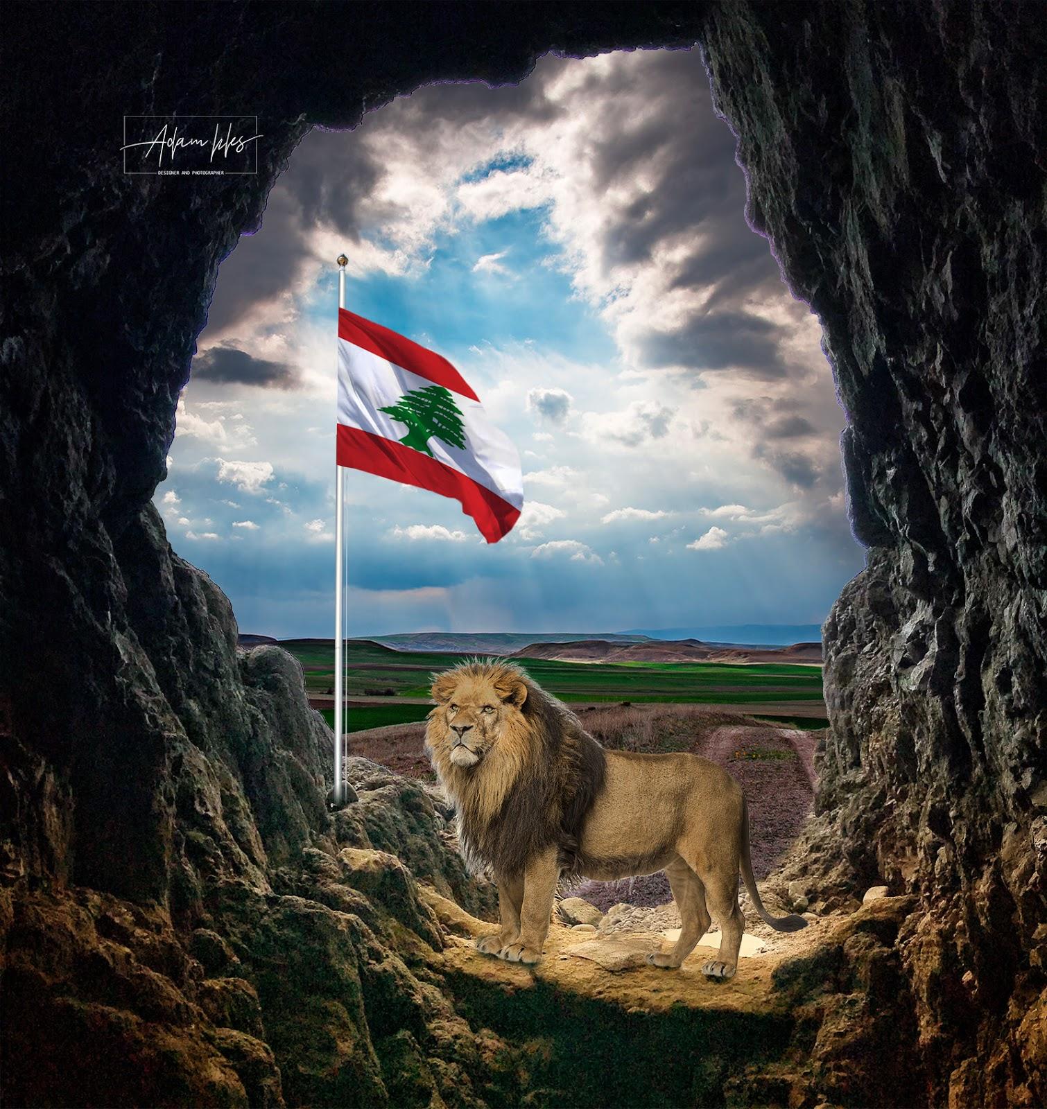 اعلام الوطن العربي