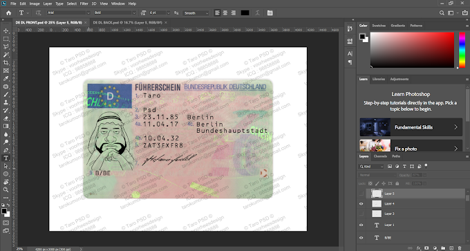 GERMANY DRIVER LICENSE EDITABLE PSD TEMPLATE