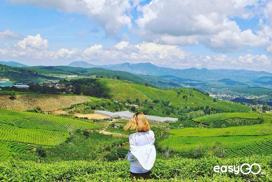 địa điểm du lịch Lâm Đồng