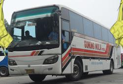 Harga Tiket Lebaran 2019 Bus Eka E Transportasi Com