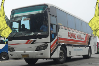 Harga Tiket Lebaran 2019 Bus Gunung Mulia