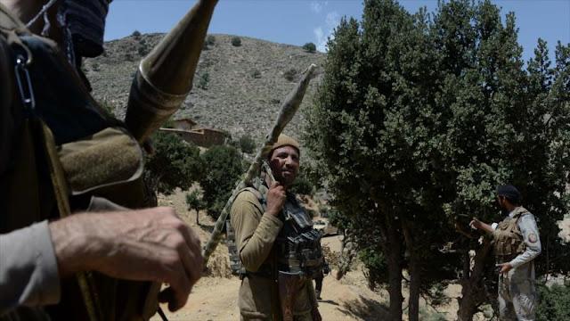 Pentágono admite que Afganistán se convierte en paraíso terrorista