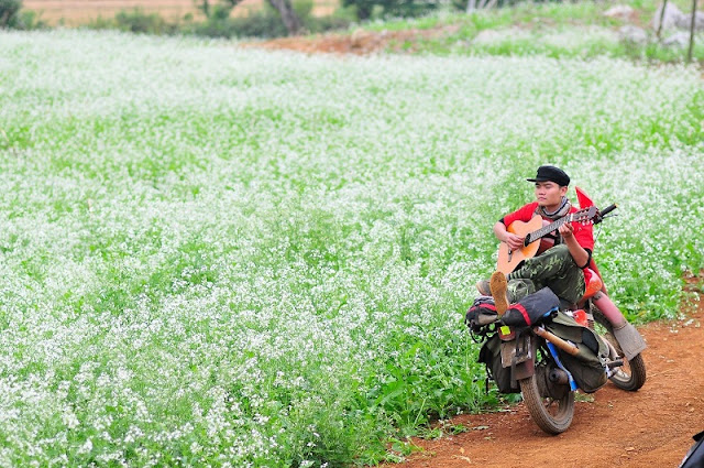 The most beautiful landscapes in north vietnam in October 3