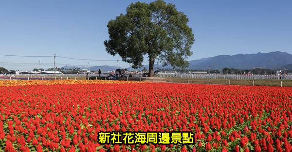 台中新社花海周邊景點50個|台中山線一日遊|山線景點|持續更新