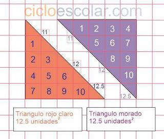 bases y alturas desafío 28 contestado área de triángulos