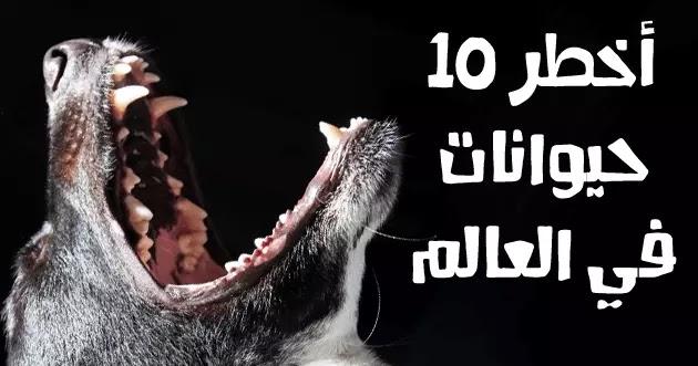 حيوانات مخيفة وخطيرة