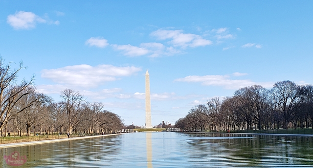 O que visitar no National Mall em Washington